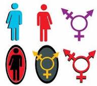 transgender 3