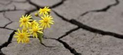 enduring hardship